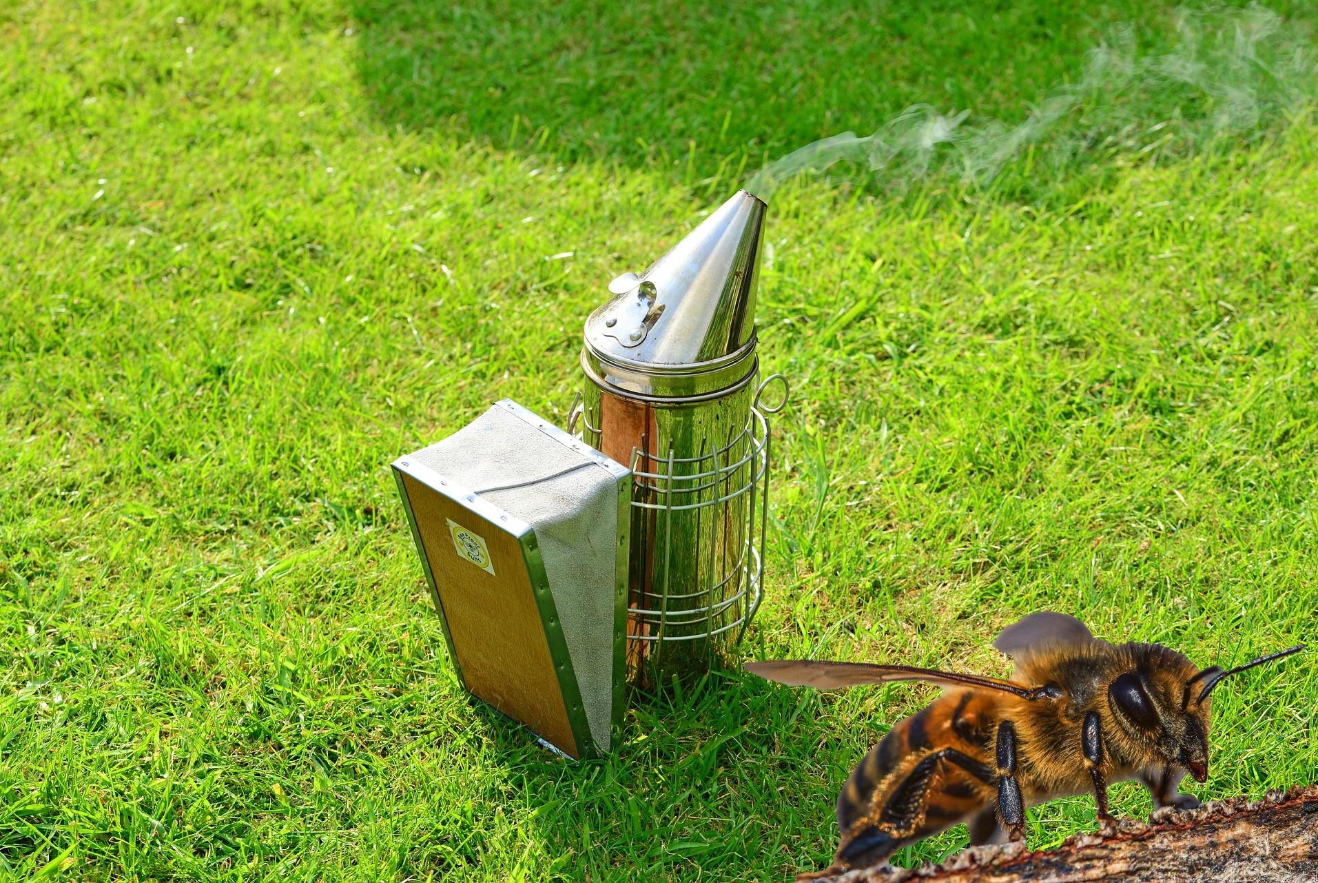Un apicultor echa por error marihuana en el ahumador y se pone a recolectar néctar como si fuera una abeja
