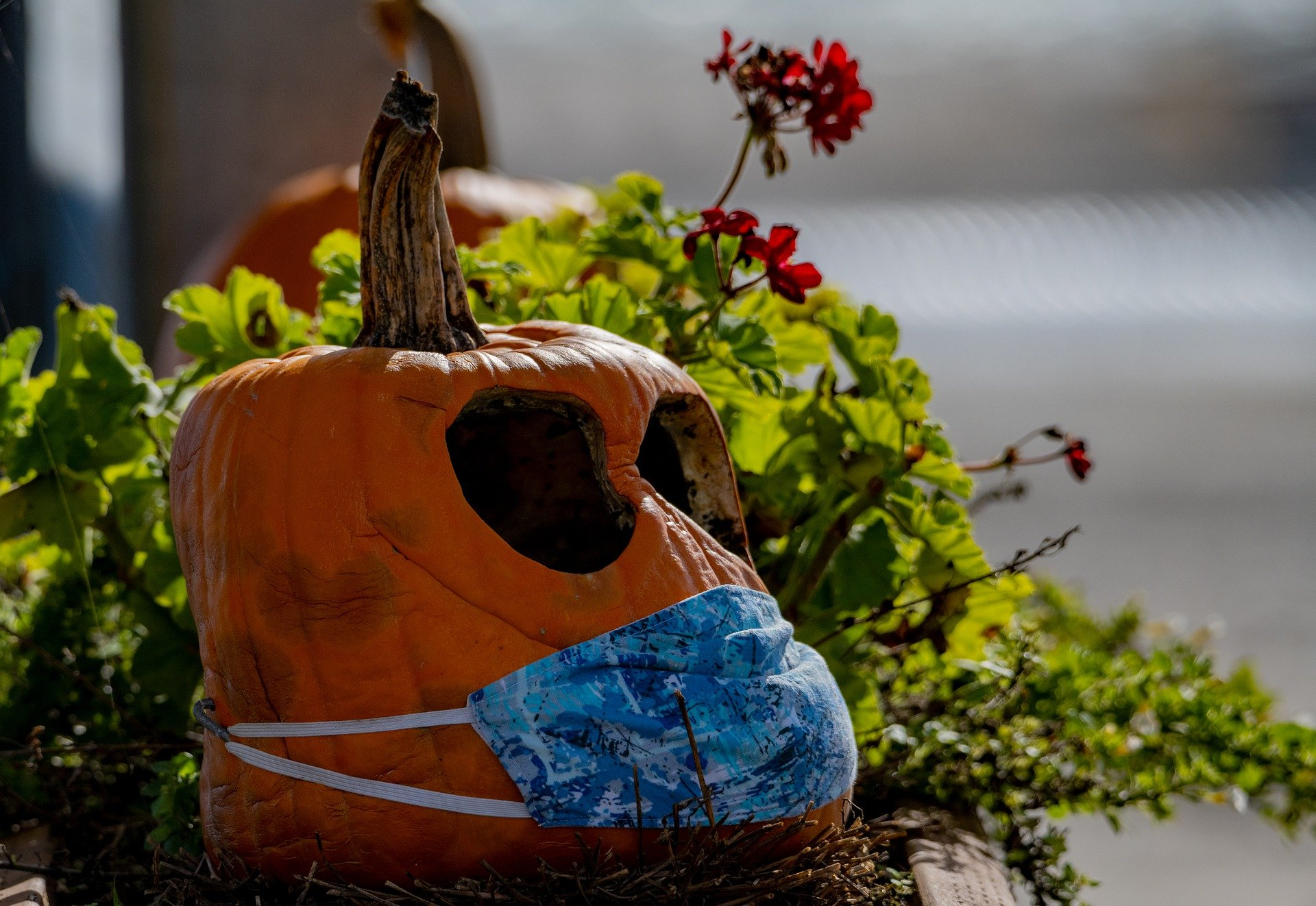 Halloween 2020, truco o trato: solo se podrán regalar mascarillas, geles hidroalcohólicos y listerine