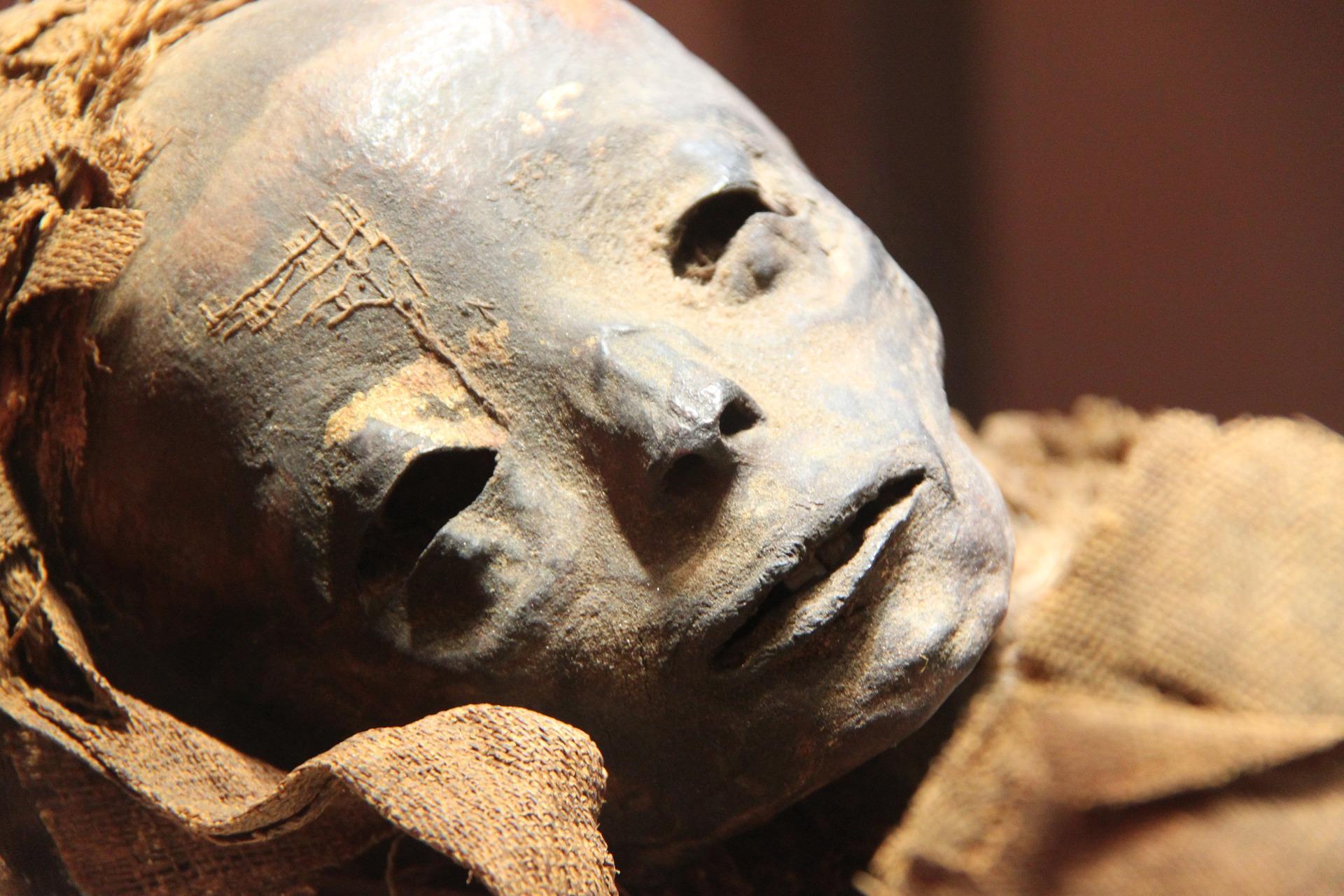 """Encuentran el """"paluego"""" más antiguo de la historia entre los dientes de una momia egipcia"""