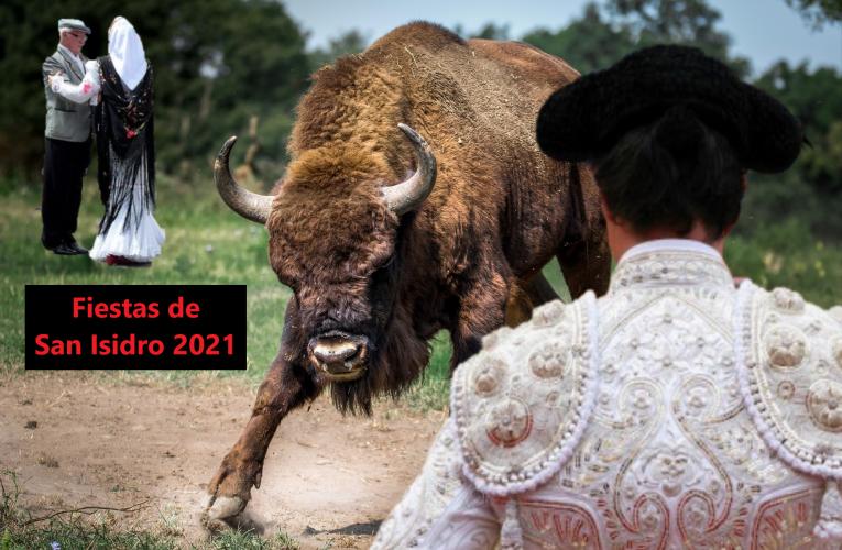 Los madrileños torean a la manada de bisontes que había repoblado la pradera de San Isidro en Madrid durante el confinamiento